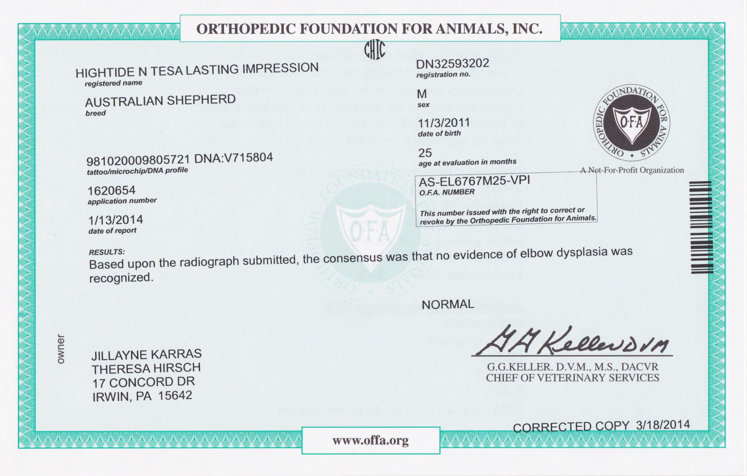 Hightide Kennel Jacksons Certificates
