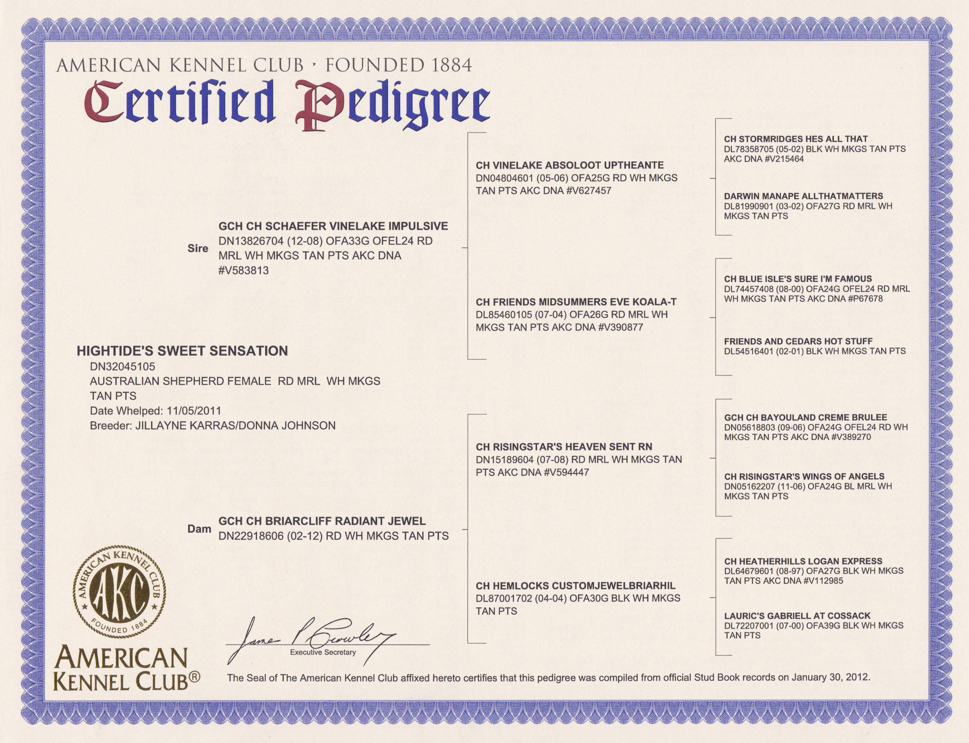Kennel Club Registration Certificate – Icalliance